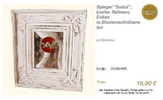 00-42-443-Spiegel _Sudut_, breiter Ra_sam nok