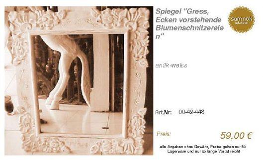 00-42-448-Spiegel _Gress, Ecken vorst_sam nok